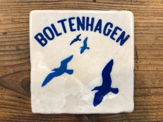 FLIESE_Boltenhagen_Möwe