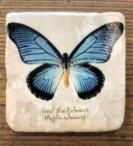 Henri Banks - Marmorfliese Schmetterling blau