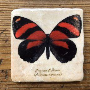 Henri Banks - Marmorfliese Schmetterling rot-schwarz