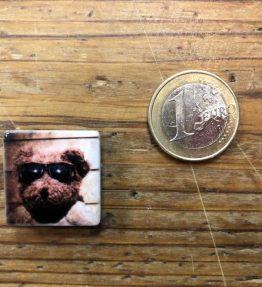 Henri Banks - Micromagnet - Bär mit Sonnenbrille