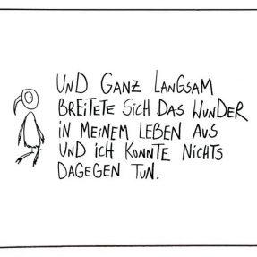Magnet_Wunder
