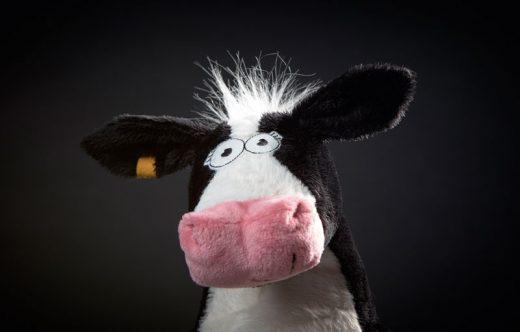 sigikid Beaststown Milk on the Fields2