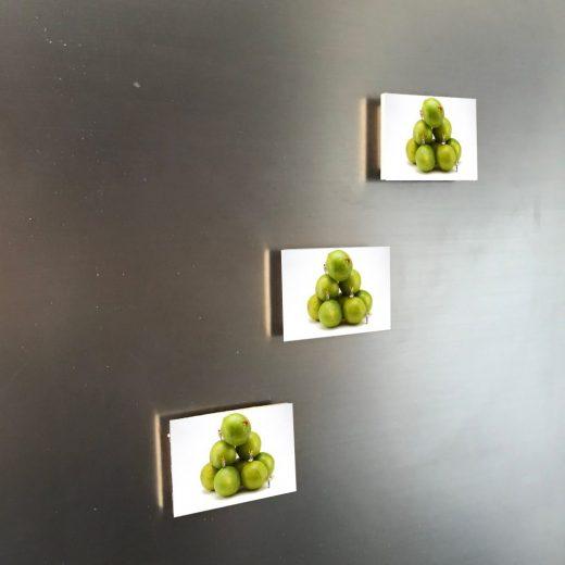 Limetten 6x4 Magnet