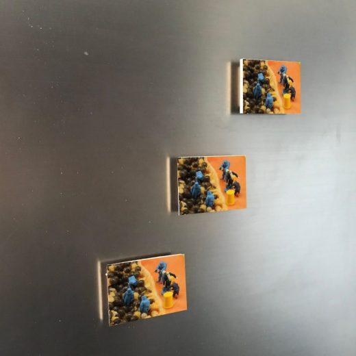 Papaya 6x4 Magnet