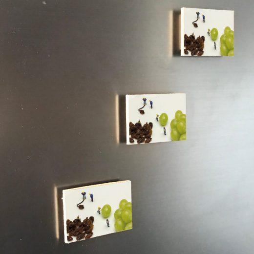 Rosinen 6x4 Magnet