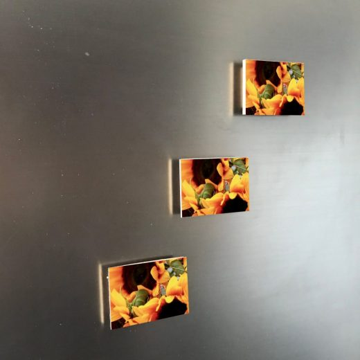 Sonnenblume-Gärtnerin 6x4 Magnet