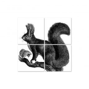 "boubouki - Fliesenaufkleber ""Eichhörnchen Cip n' dale"" 4er Set - 15cmx15cm"