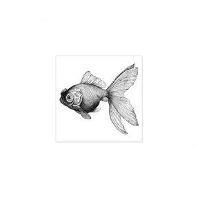 "boubouki - Fliesenaufkleber ""Fisch Cleo"" 2er Set - 15cmx15cm"