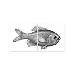 """boubouki - Fliesenaufkleber """"Fisch Fred"""" 2er Set - 15cmx15cm"""