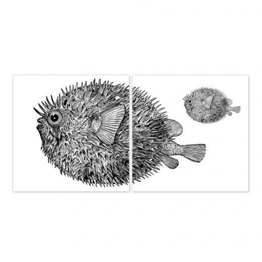 boubouki - Fliesenaufkleber - Kugelfisch Googly - 2er Set2