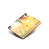 Paprcuts_Wallet_back-24