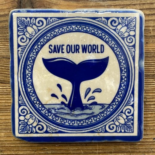 Save our World 2